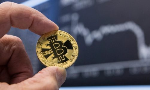 What Makes Crypto Bets Dazzle Out of The League